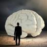 [Udemy] Знакомьтесь, Ваш Мозг